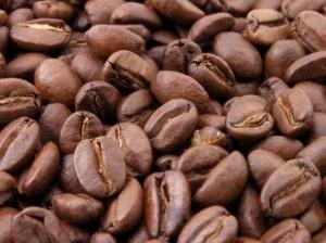 café_calipso