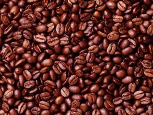 salsa_café